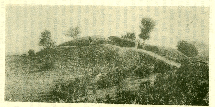 Fig. 33 Ruins of the Sakiya tope, put up by his relatives over their portion of the ashes from the funeral pyre of the Buddha.